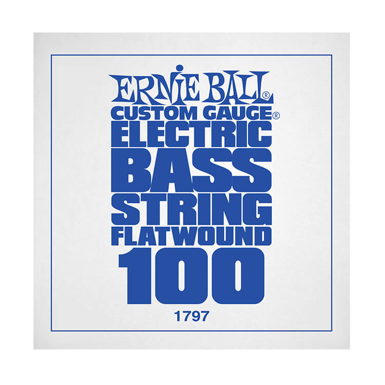 Ernie Ball Flatwound Electric Bass Single String - Long Scale .100