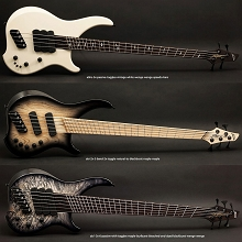 Dingwall Afterburner AB1 Custom Electric Bass