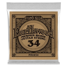 Ernie Ball Earthwood Phosphor Bronze Acoustic Guitar Single String .034