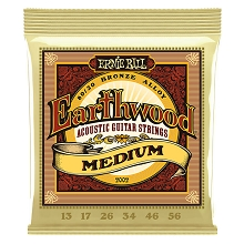 Ernie Ball Earthwood 80/20 Bronze Acoustic Guitar String Set - 13-56 Medium 2002