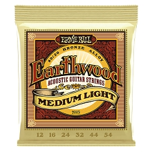 Ernie Ball Earthwood 80/20 Bronze Acoustic Guitar String Set - 12-54 Medium-Light 2003